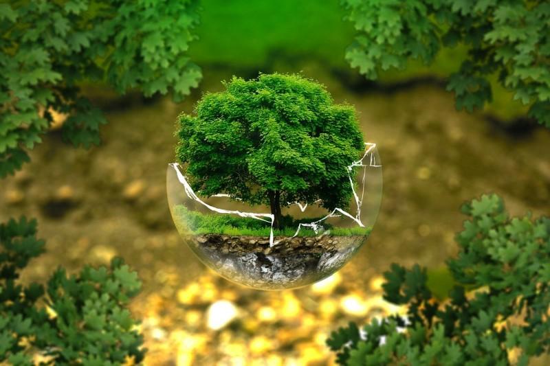 kako varujemo naravo